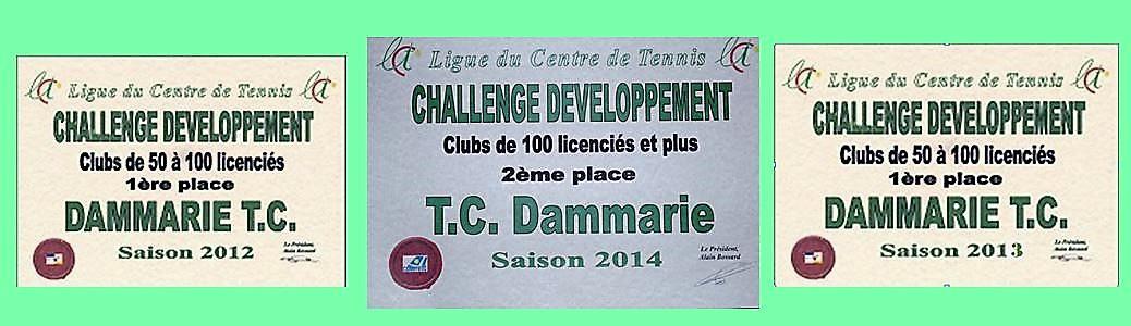 Challenge_vert1.jpg